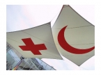 Cooperation with ICRC and IFRC