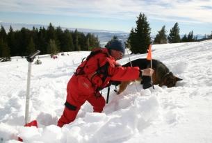 Mountain Rescue Service Training